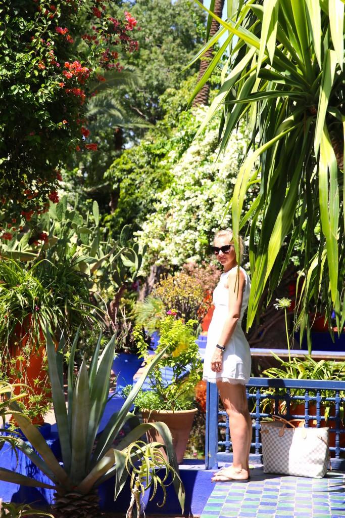 steph-garden-majorelle-ysl-cactus