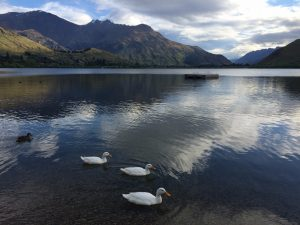 les-exploratrices-lake-hayes-nz