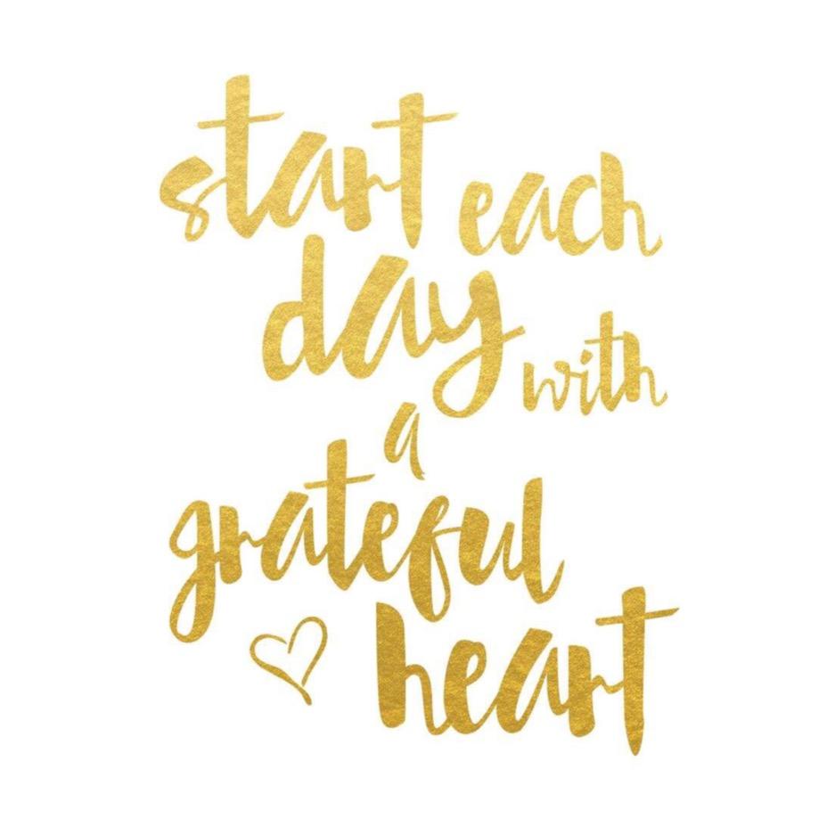 comment-survivre-gratitude-chaque-jour