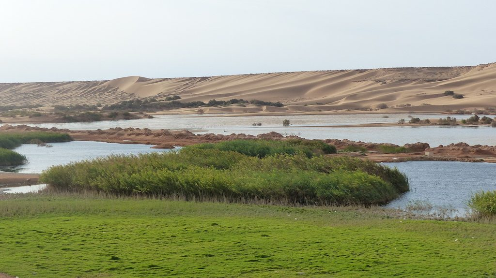 riviere-oued-laayoune