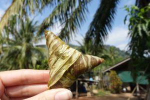 les-exploratrices-krabi-khao-thong-sticky-rice