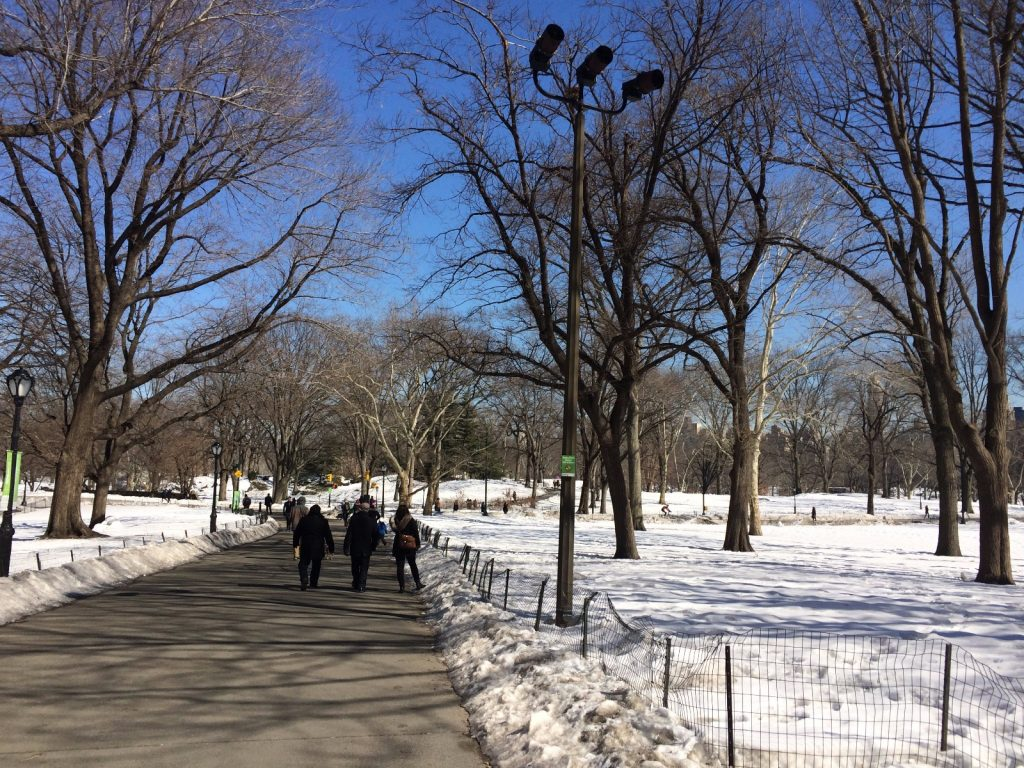 les-exploratrices-new-york-central-park-winter