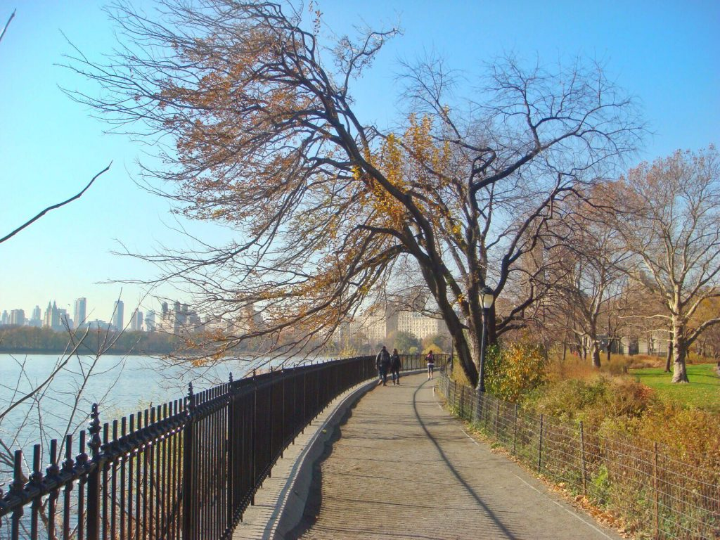 les-exploratrices-nyc-central-park
