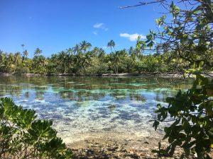 raiatea-tahaa-jardin-corail-view-les-exploratrices