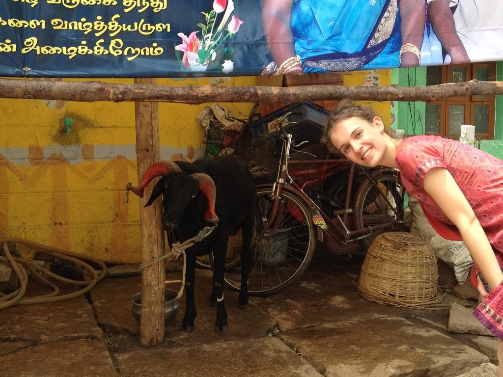 voyage unique des femmes en inde