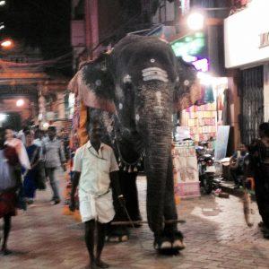 voyager seule en inde du sud à Madurai