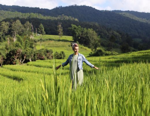 découvrez la Thaïlande du nord hors des sentiers battus