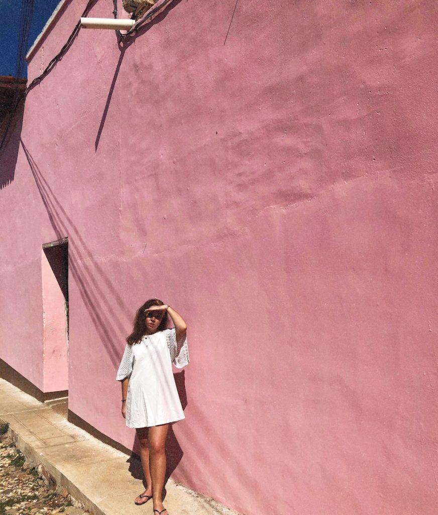 Trinidad-mur-rose